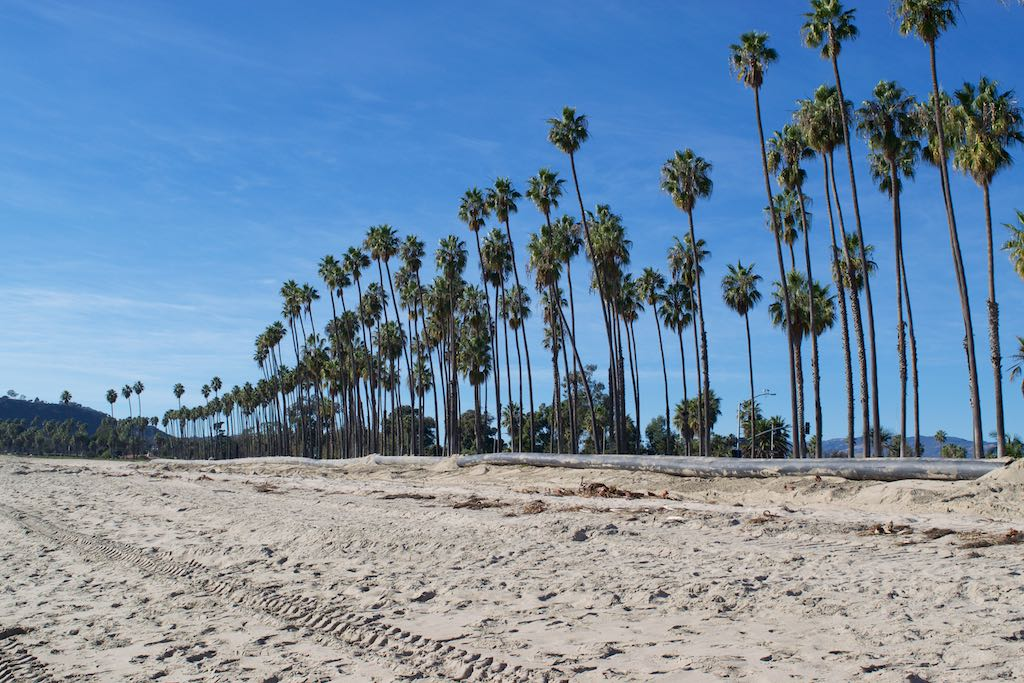 Palm-tree-lined beaches ... boy oh boy did we miss it so much !