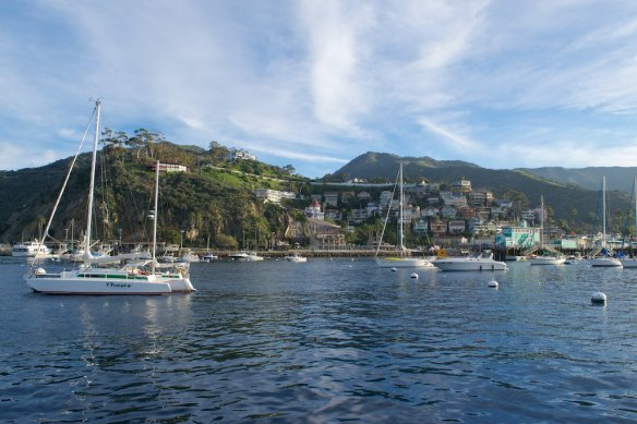 The next morning, we gazed at the beauty of the harbor and the little town that wraps around it from Pesto's deck