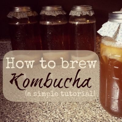 How to Brew Kombucha (a simple 5-step tutorial)