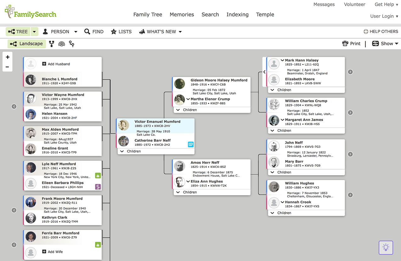 FamilySearch Tree Pedigree View
