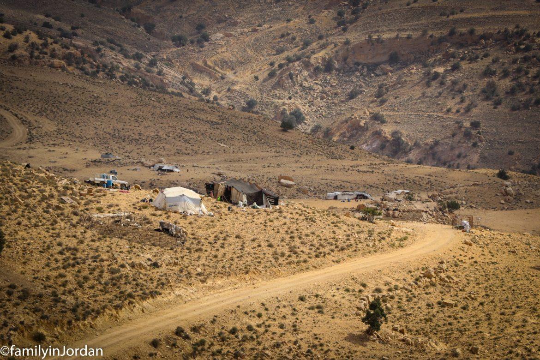 camp bedouin