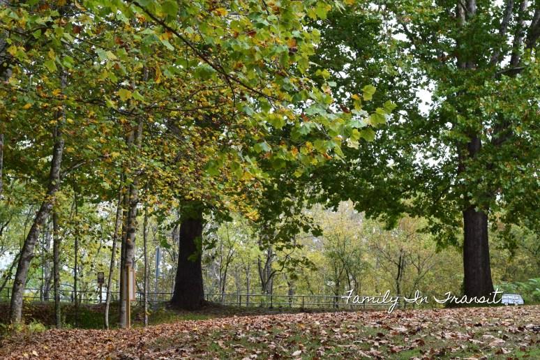 Spikebuck Mound