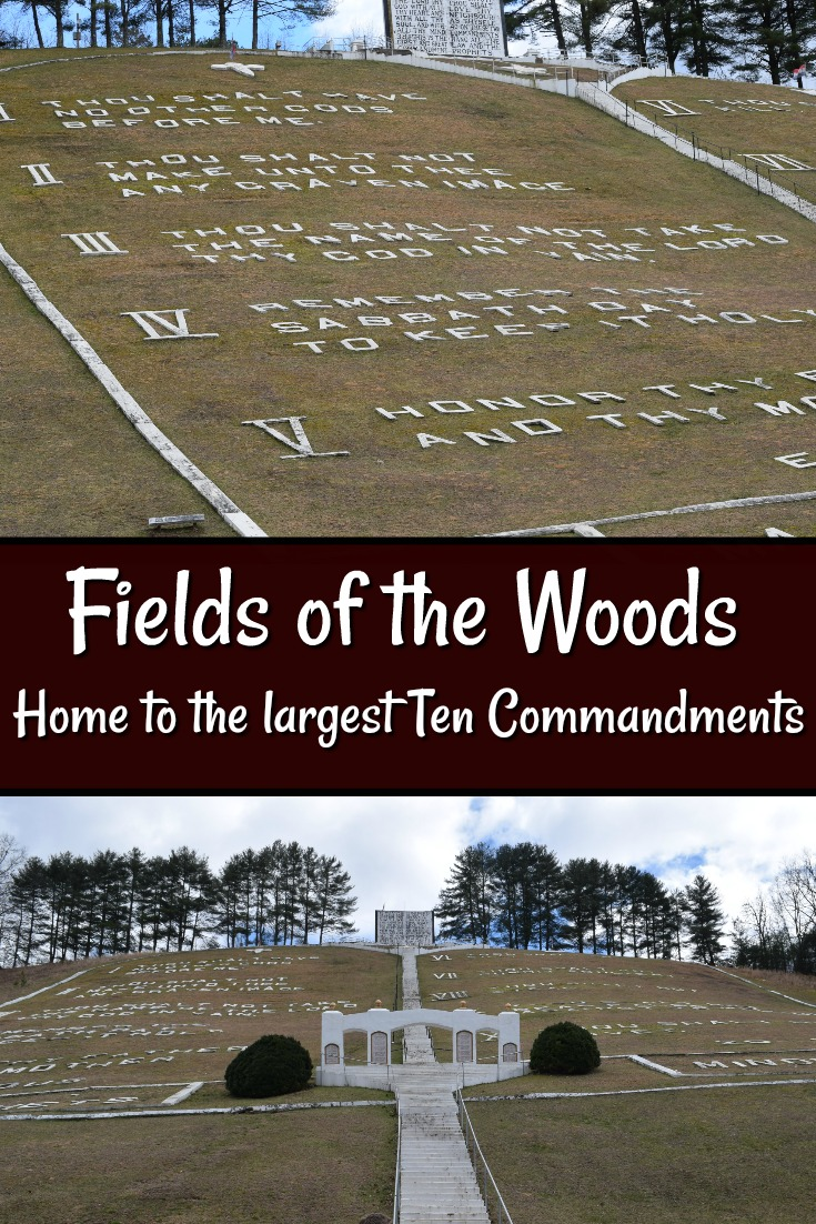 Fields of the Woodsq
