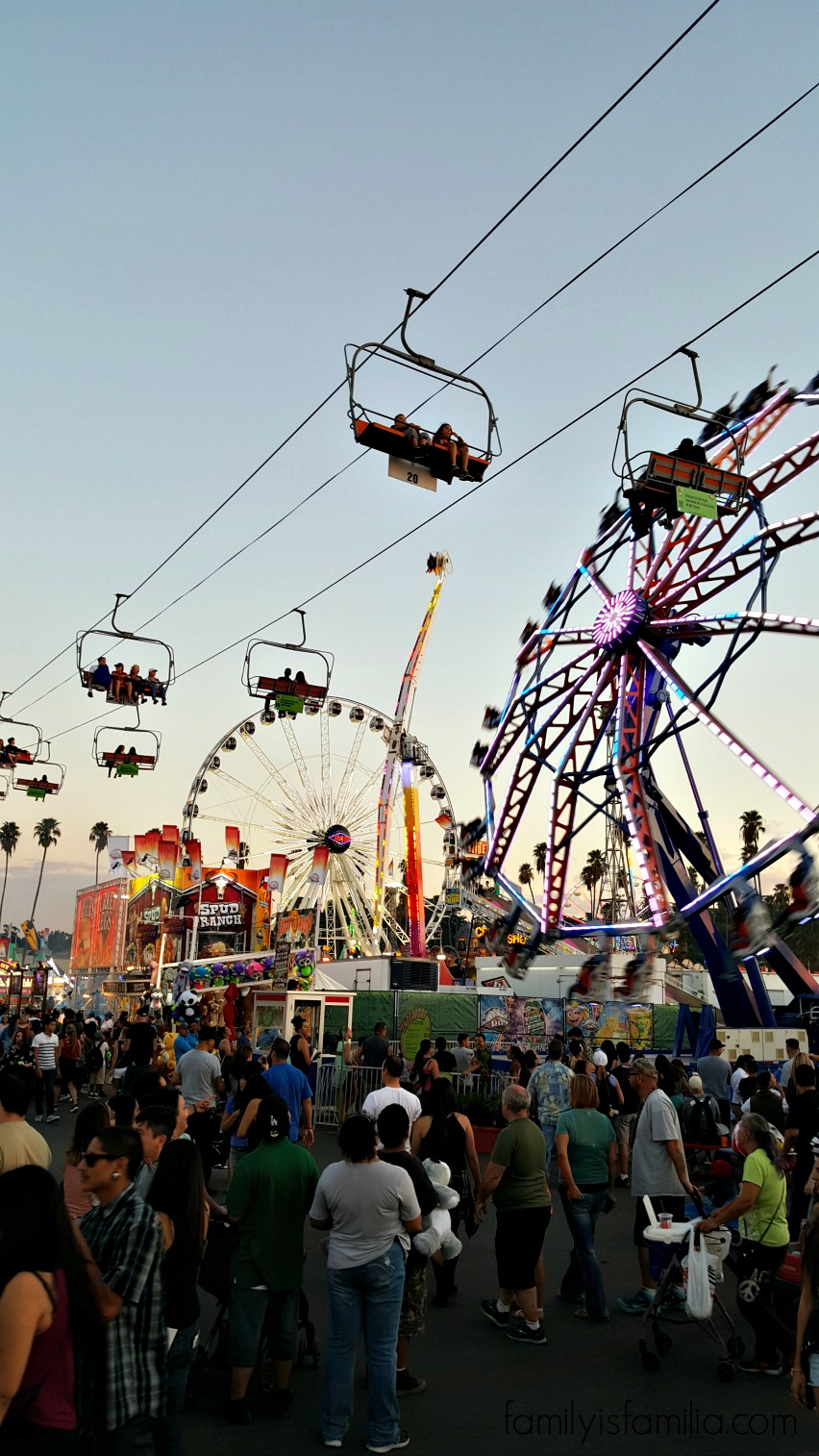What's Poppin' at the L.A. County Fair?!
