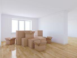 Relocation in child custody cases