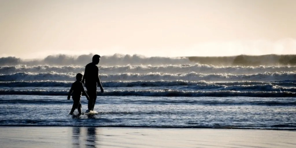 Parental Alienation: the Aftermath