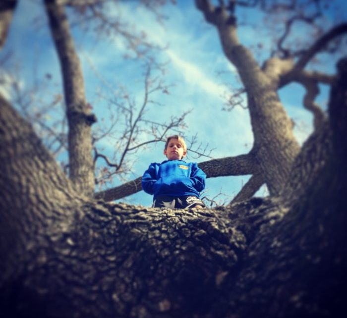 Zane up a tree