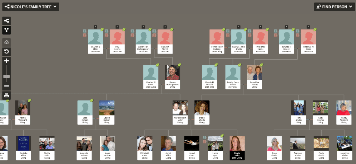 Family view in Ancestry family tree
