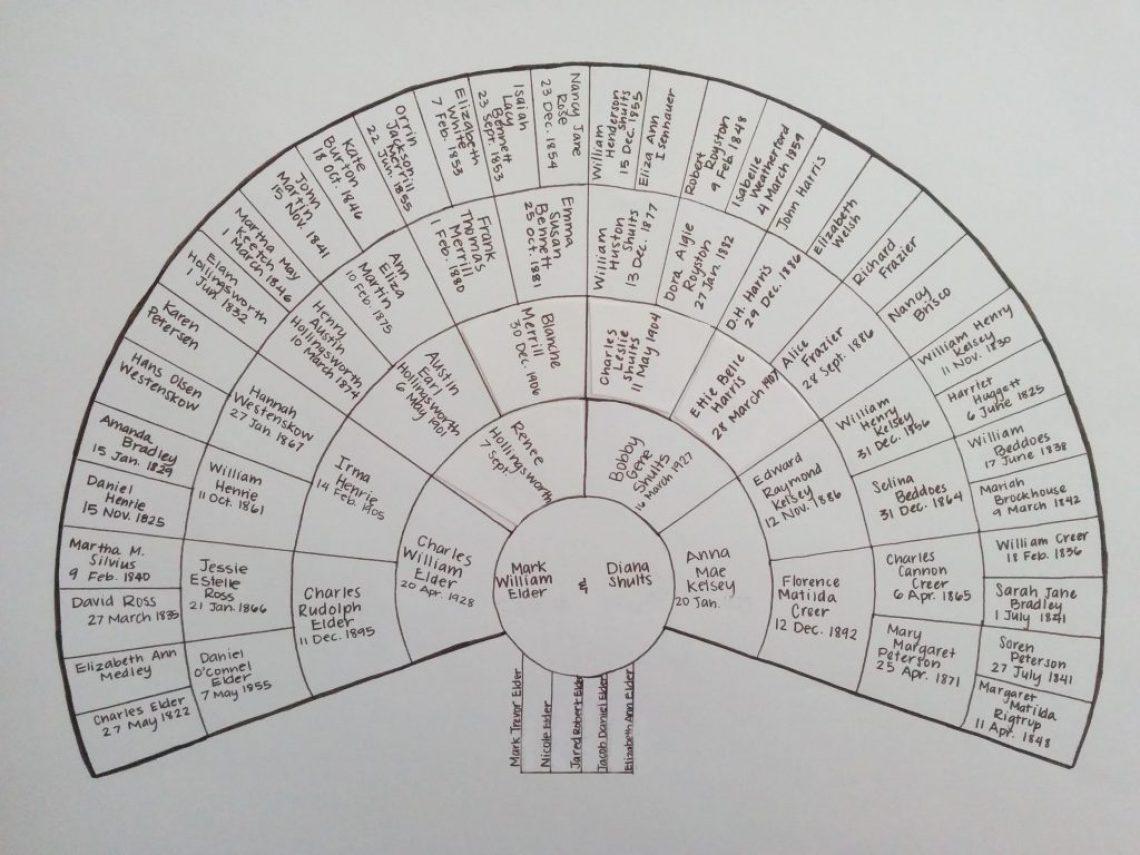 Nicole's Fan Chart