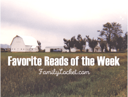 Favorite reads of the week barn