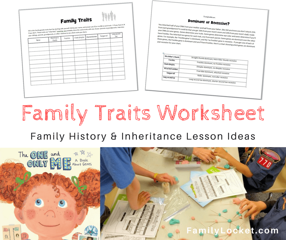 The One and Only Me Family traits book lesson ideas Family – Worksheet Ideas