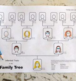 Inherited Traits Family Tree Worksheet – Family Locket [ 768 x 1024 Pixel ]