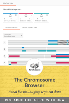 the chromosome browser