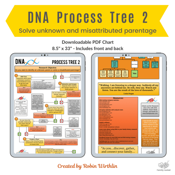 DNA Process Tree 2 Product Image (2)