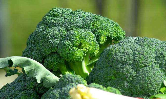 eating broccoli