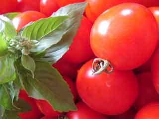 basil and tomatos