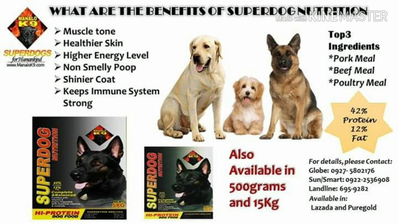 MANALOK9 SUPERDOG DOG TRAINING SERVICES SUPERDOG NUTRITON SUPERDOG SOAPS SUPERPUPPIES - MANALOK9 SUPERDOG!  DOG TRAINING SERVICES!  SUPERDOG NUTRITON!  SUPERDOG SOAPS!  SUPERPUPPIES!