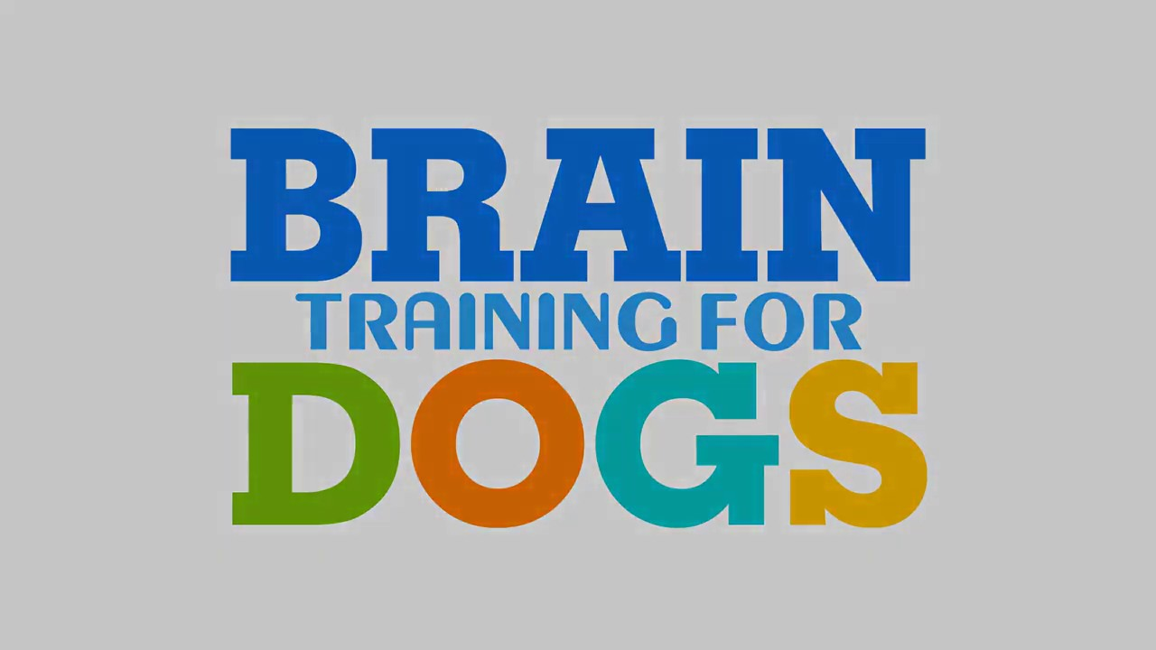 Brain Training For Dogs Unique Dog Training Course Easy Sell into a Genius - Brain Training For Dogs Unique Dog Training Course! Easy Sell!  into a Genius!