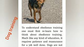 Dog training pt . 1 - Dog training pt . 1