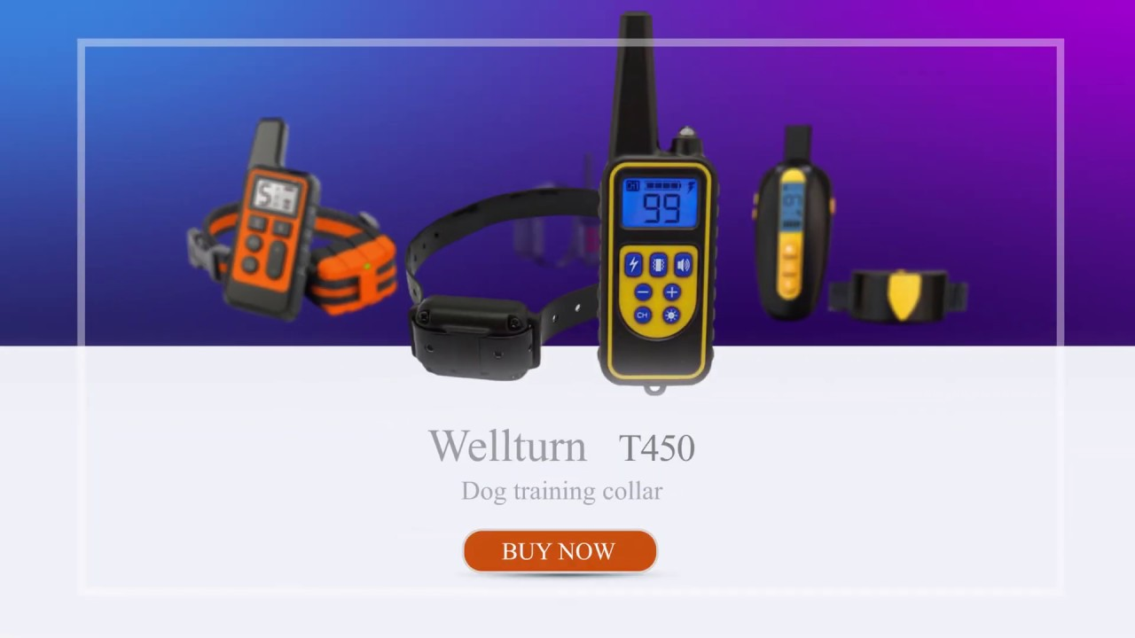 The perfect dog training product recommend. - The perfect dog training product recommend.