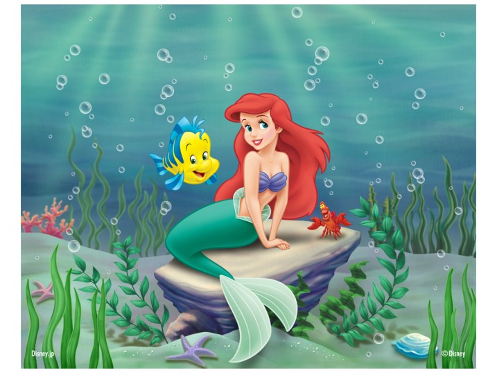 The-Little-Mermaid-disney-princess-9579764-1024-768