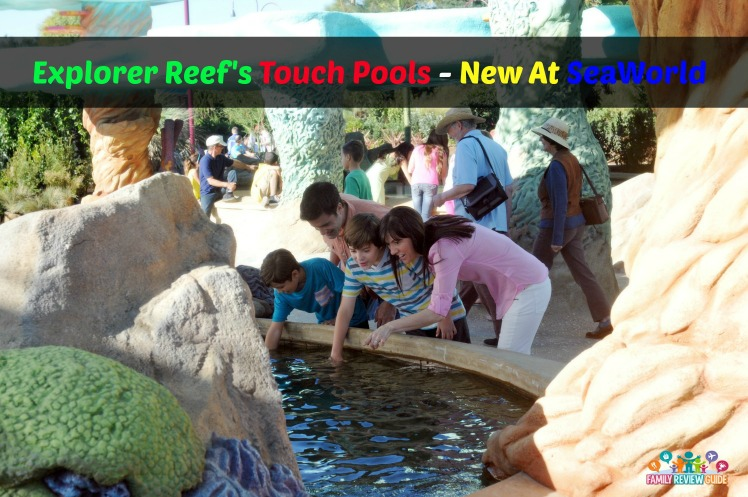 Explorer's Reef touch pools