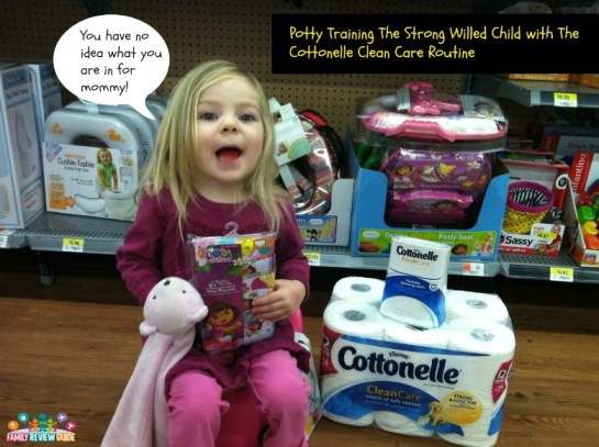 Potty Training The Strong Willed Child Ctnlcareroutine
