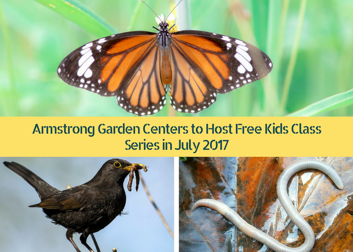 How About Introducing Them To The Importance Of Gardens! Kids Love To Use  Their Hands And Get Dirty And Amrstrong Garden Centers ...