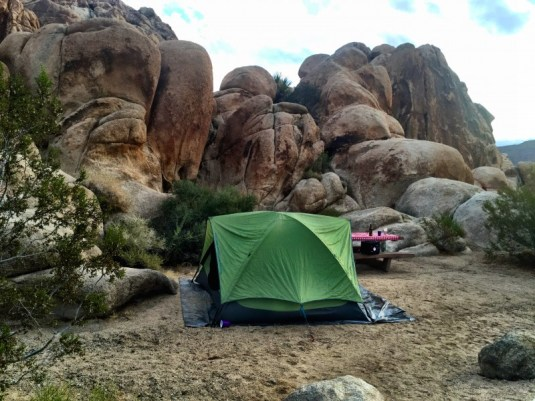 Indian Cove Joshua Tree, campsite #4