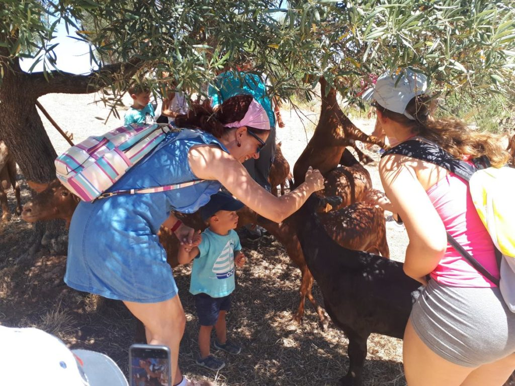 Familia acariciando cabras
