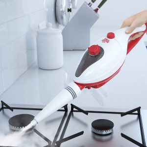 steam cleaner for oven