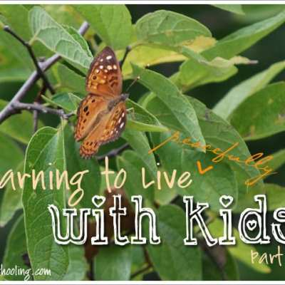 Learning to Live {Peacefully} with Kids Part 2