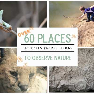 60 Places to go in North Texas to Observe Nature