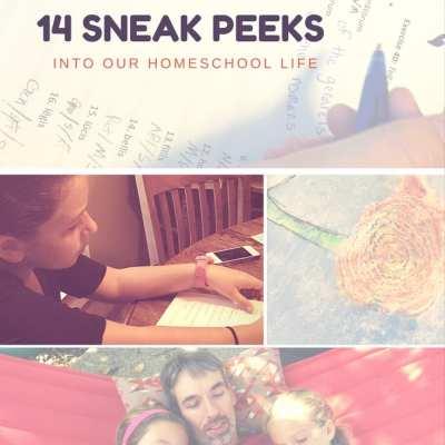 14 Sneak Peeks into Our Homeschool Life