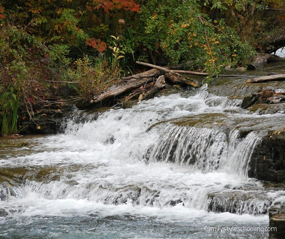 Niagara falls state park (13)