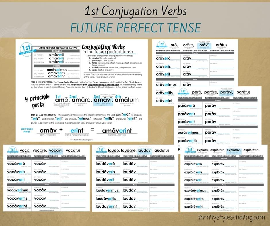 1st Conjugation Verbs Future Perfect Tense (1)