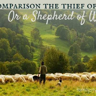 The Power of Comparison