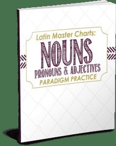 Latin Nouns Pronouns and Adjectives PNG