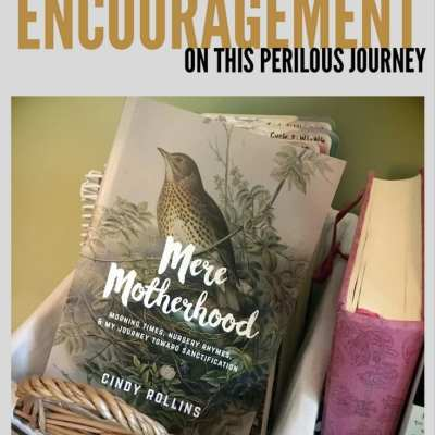Mere Motherhood – Encouragement on this Perilous Journey