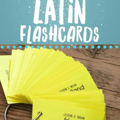 Henle's 1st Year Latin Vocabulary Keyring Flashcards