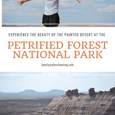 Experience the Beauty of the Painted Desert at the Petrified Forest National Park