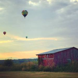 Balloons in Washington County