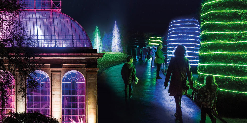 Botanic Garden Christmas Lights