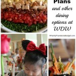 Disney Dining Plan and Other Disney Dining Options