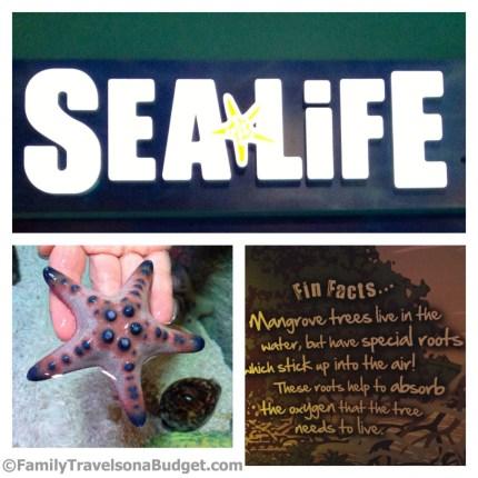 Sea Life Aquarium at Grapevine Mills in Texas