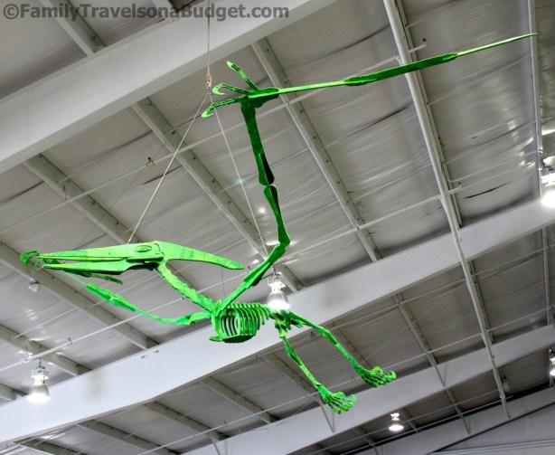 Sci-Quest Pteranodon