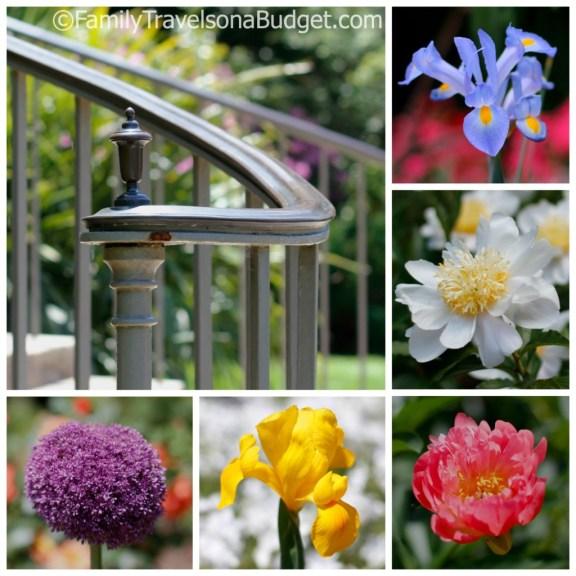 Raleigh visitors guide, Sarah P. Duke Gardens