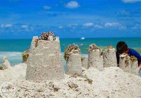 Sandcastle dreams on a Carolina beach