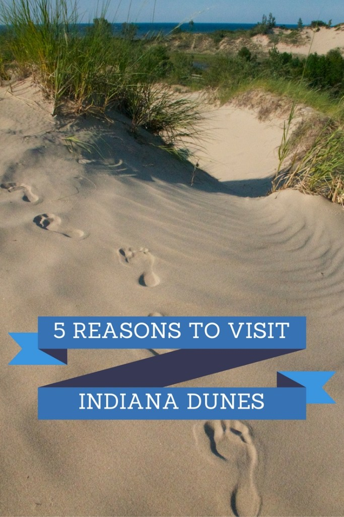 5 reasons to visit Indiana Dunes this fall