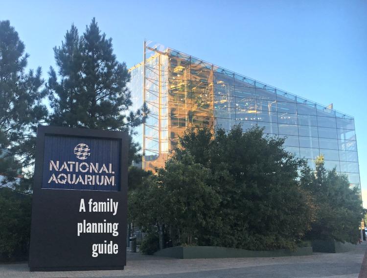 Baltimore's National Aquarium